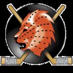 150px-Logo_EHC_Visp