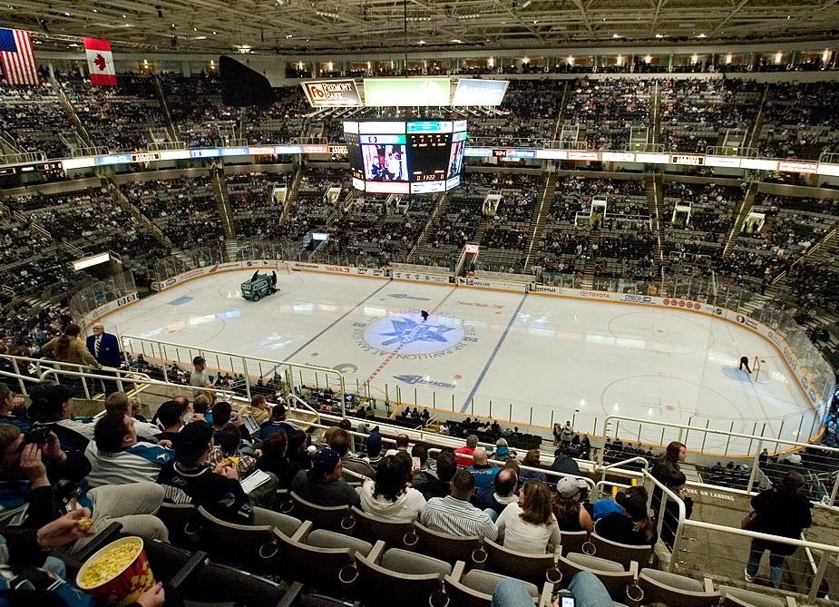 AHL: DiDomenico will nach Langnau, Thürkauf und Rod erfolgreich